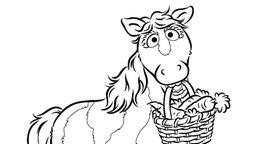 Pferd mag möhren sesame workshop ndr