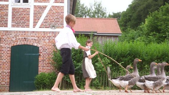 Kinder im Freilichtmusuem Kiekeberg beim Gänsehüten © NDR Silke König Foto: Silke König