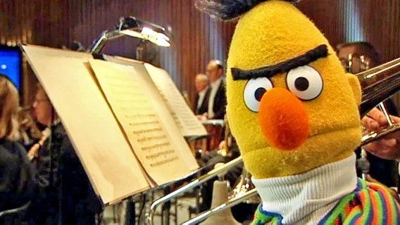 Bert steht inmitten des Orchesters der NDR Radiophilharmonie © NDR