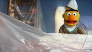 Bert trägt einen Malerhut aus Zeitungspapier auf dem Kopf © NDR