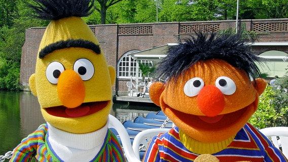 Bert und Ernie essen Kekse © NDR/Studio Hamburg