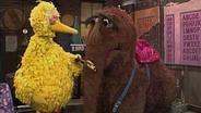 Bibo und Schnuffi © NDR/Sesame Workshop Foto: screenshot