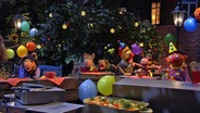 Sommerfest in der Sesamstraße © NDR / Uwe Ernst