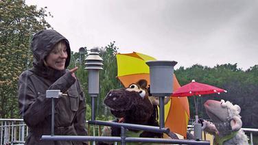 Wolle und Pferd bei Rike © NDR / Uwe Ernst