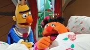 Bert am Bett von Ernie © NDR / Uwe Ernst