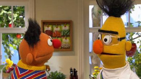 Bert erklärt Elektrostatik. © NDR Foto: screenshot