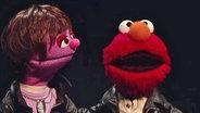 Justin und Elmo © NDR Fotograf: screenshot