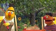 Bert und Ernie im Garten © NDR Thorsten Jander Foto: Thorsten Jander