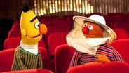 Bert und Ernie bei der Orchesterprobe der NDR Radiophilharmonie, Ernie trägt Imkerhut © Cordula Kropke Fotograf: Cordula Kropke