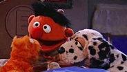 Ernie singt mit Hund und Katze im Bett © NDR/sesame workshop Foto: screenshot