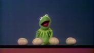 Kermit zählt Eier © NDR/sesame workshop Foto: screenshot