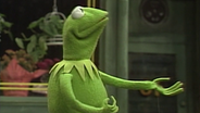 Kermit singt über seinen Ellenbogen. © NDR/Sesamstraße Foto: screenshot