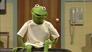 Kermit sitzt auf dem Untersuchungstisch © NDR Sesame Workshop Foto: screenshot