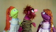 "Figuren der Sesamstraße singen das Lied ""Mah Na Mah Na"" © NDR"