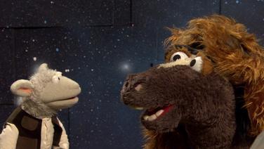 Wolle und Pferd sind für den Film verkleidet © NDR/Sesame Workshop Foto: Screenshot