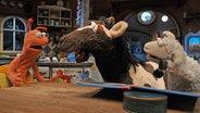 Finchen, Pferd und Wolle am Küchentisch © NDR / Uwe Ernst