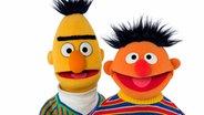 Ernie und Bert © NDR/Thorsten Jander Fotograf: Thorsten Jander