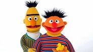 Ernie und Bert mit Quietsche-Entchen © NDR/Thorsten Jander Fotograf: Thorsten Jander