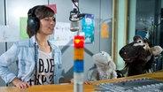 Moderatorin Aline König mit Wolle und Pferd im Studio. © NDR Fotograf: Thortsen Jander