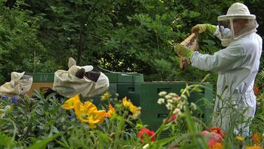 Wolle und Pferd mit Imkerhüten beim Imker. © NDR Foto: Thorsten Jander