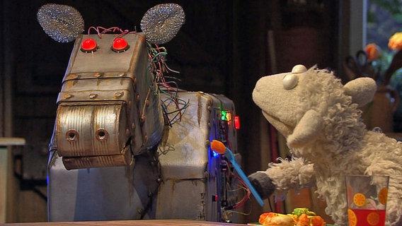 Wolle mit einem Roboterpferd. © NDR Foto: Thortsen Jander