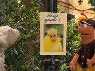 """Wolle und Finchen betrachten das Plakat """"Mama gesucht"""". © NDR Fotograf: screenshot"""