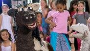 Pferd tanzt vor Kindern © NDR Foto: Thorsten Jander