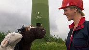 Wolle, Pferd und Julia im Windpark. © NDR Foto: screenshot