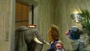 Ein Elefant guckt aus einem Aufzug