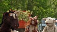 Pferd und Wolle bei ihrem Freund, dem Eichhörnchen Knuspel, im Eichenpark. © NDR, Sesame Workshop