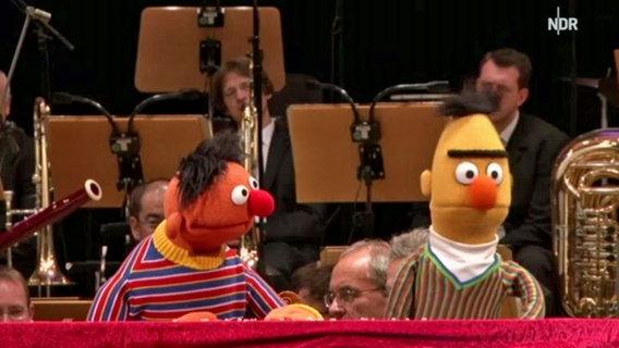 Ernie und Bert beim Konzert mit der NDR Radiophilharmonie © NDR