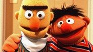 Bert und Ernie aus der Sesamstraße © NDR/Sesame Workshop