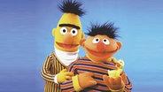 """Ernie und Bert aus der """"Sesamstraße"""" © NDR/Sesame Workshop"""