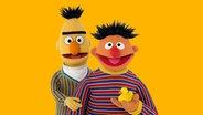 Ernie (r.) und Bert (l.) © NDR/Sesame Workshop Foto: Thorsten Jander