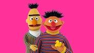 Ernie  ist Rapunzel, Bert der Prinz © NDR Foto: NDR