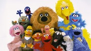 Puppen aus der Sesamstraße © NDR/Sesame Workshop