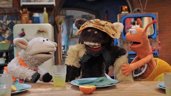 Wolle, Pferd und Finchen am Küchentisch