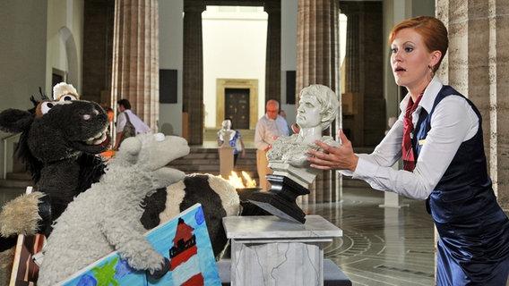 Pferd und Wolle im Museum