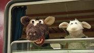 Wolle und Pferd schauen aus einem Zugabteilfenster © NDR / Uwe Ernst